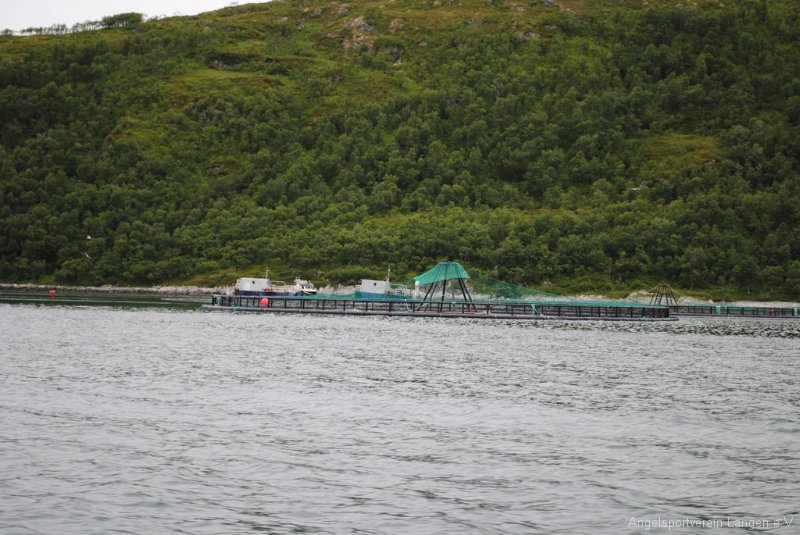 norge2010-00098