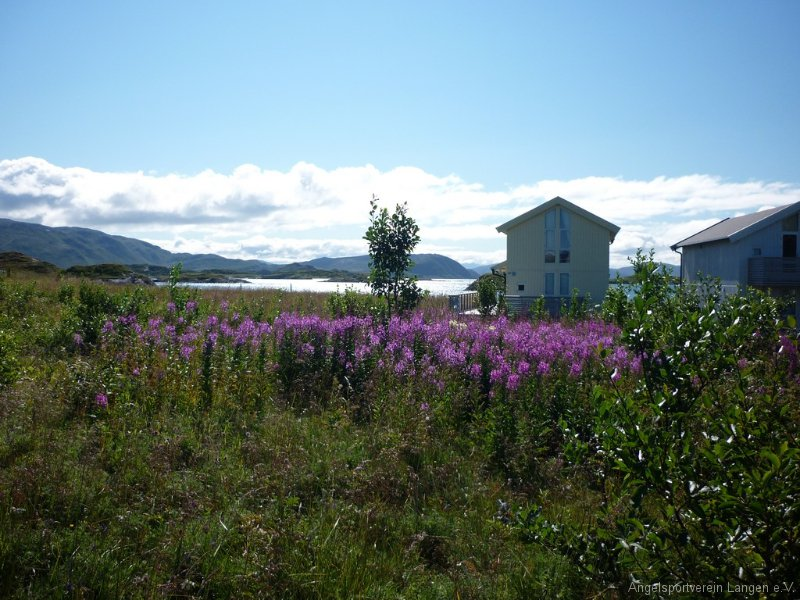 norge2011-00249