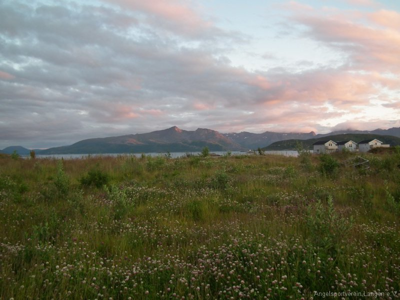 norge2011-00110