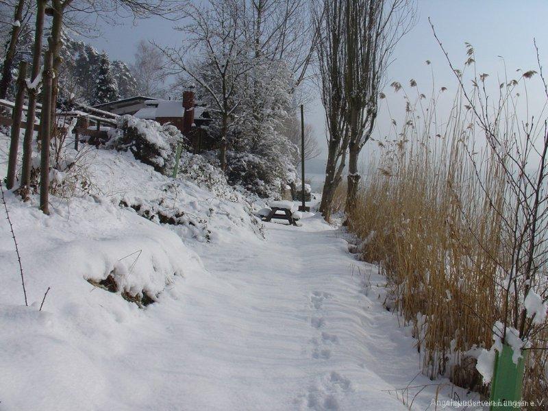 winterimp00005