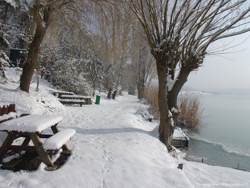 winterimp00008
